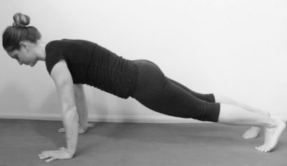 yoga push up / plank low plank one legged arm balance